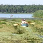 Obra - wypływ na jezioro Wielkowiejskie